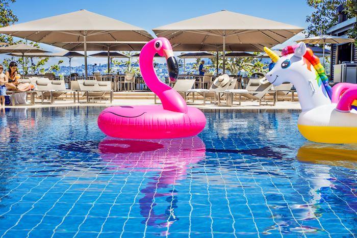 Summer Poolgarden